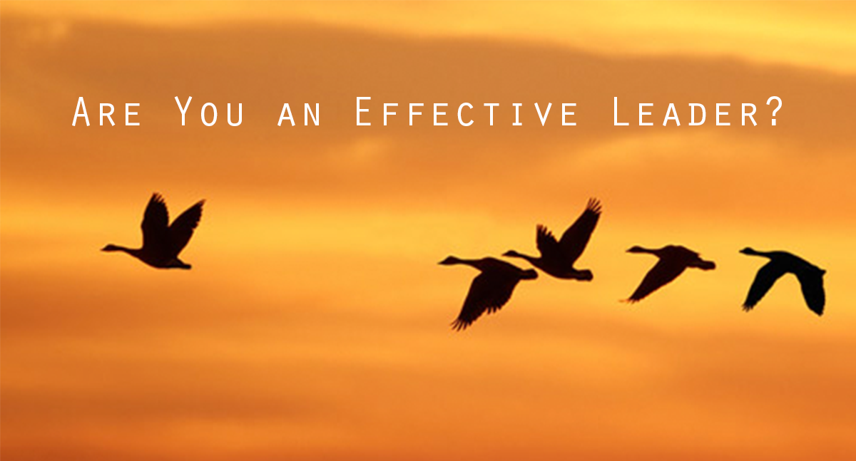 effective leader Leadership is more than just a lofty title it's also the way you take  then thought  about, and discussed the attributes of an effective leader.