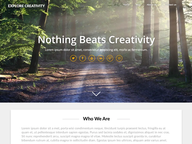 responsive wordpress theme landing
