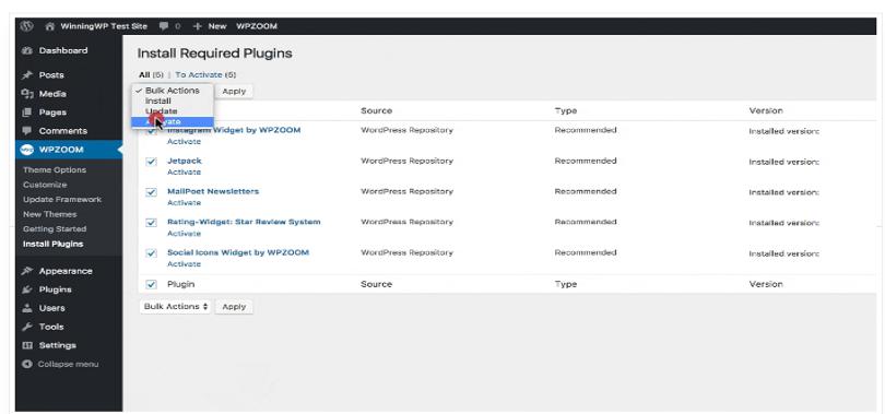 Steps to install WordPress Theme