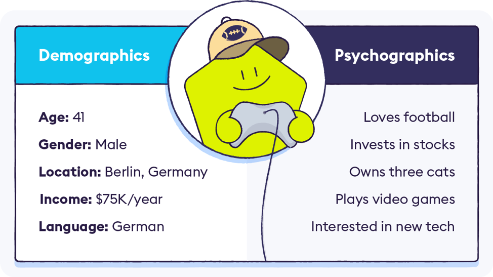 demographics and psychographics for surveys